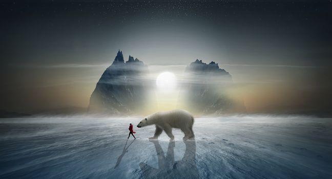 sunset, winter, North Pole, polar bear, girl, rock, art