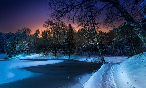 зима, закат, озеро, снег, лес, деревья, тропинка, пейзаж