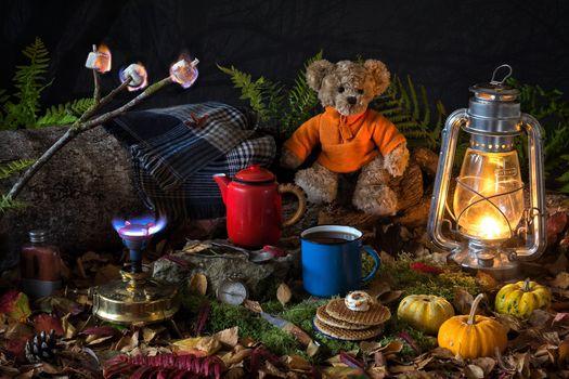 lamp, kettle, Cup, pumpkin, still life