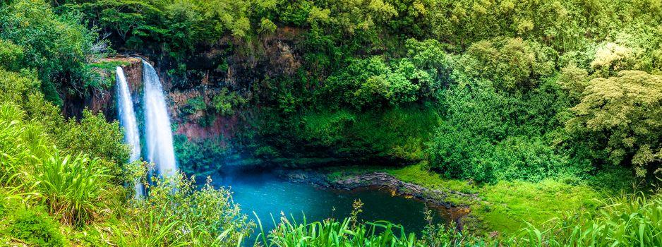río, cascada, madera, árboles, paisaje, vista, Kauai, Hawai