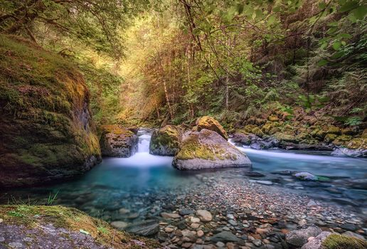 río, madera, árboles, cascada, piedras, paisaje