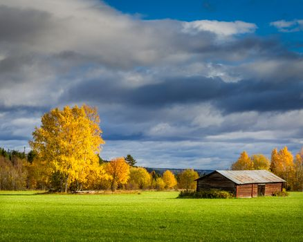 autumn, field, house, trees, sky, clouds, landscape