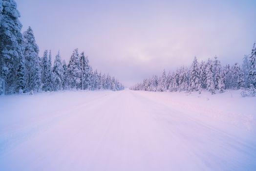 invierno, carretera, madera, árboles, paisaje
