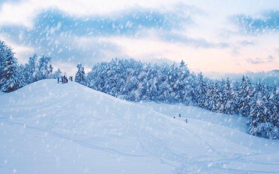 winter, snow, hills, slide, trees, landscape