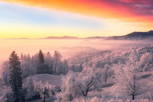 sunset, the mountains, hills, trees, frost, landscape