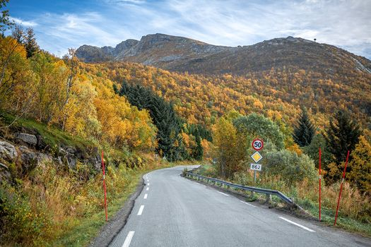 Dusk, Norway, autumn, road, the mountains, trees, landscape