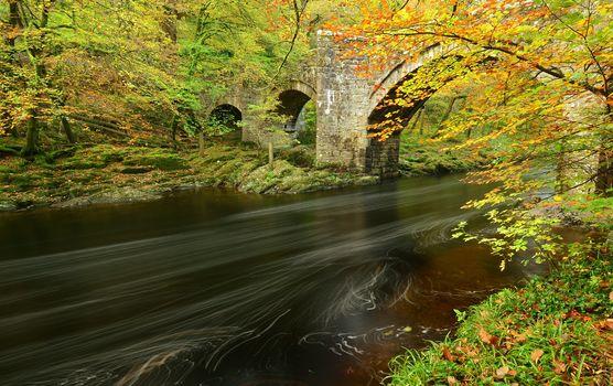 autumn, River, bridge, forest, trees, landscape