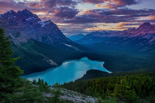Peyto Lake, Banff National Park, Alberta, Canada, the mountains, lake, sunset, trees, forest, landscape