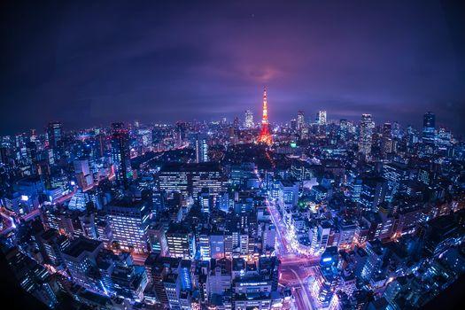 Tower Tokyo, Tokyo, Japan, night, lights, illyuminatsiya