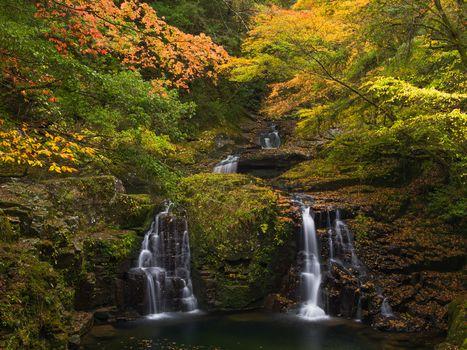 jesień, drewno, drzew, wodospad, krajobraz
