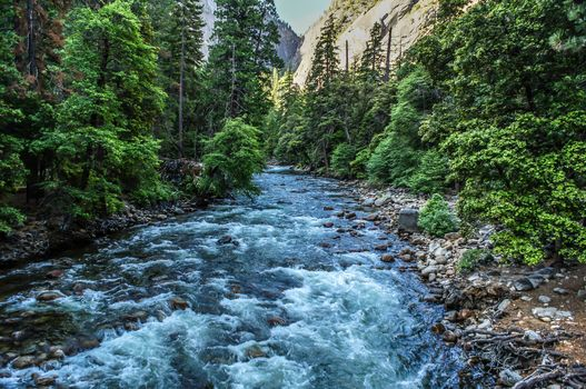 Merced River, Yosemite National Park, River, flow, forest, trees, landscape, the mountains
