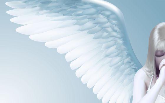 angel, vector, minimalism