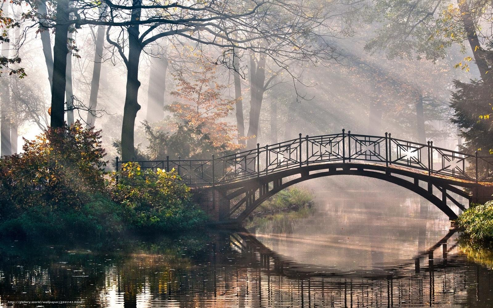 Картинки прекрасных пейзажей