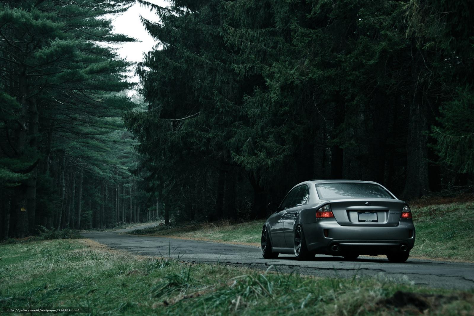 Картинки парень лес машина