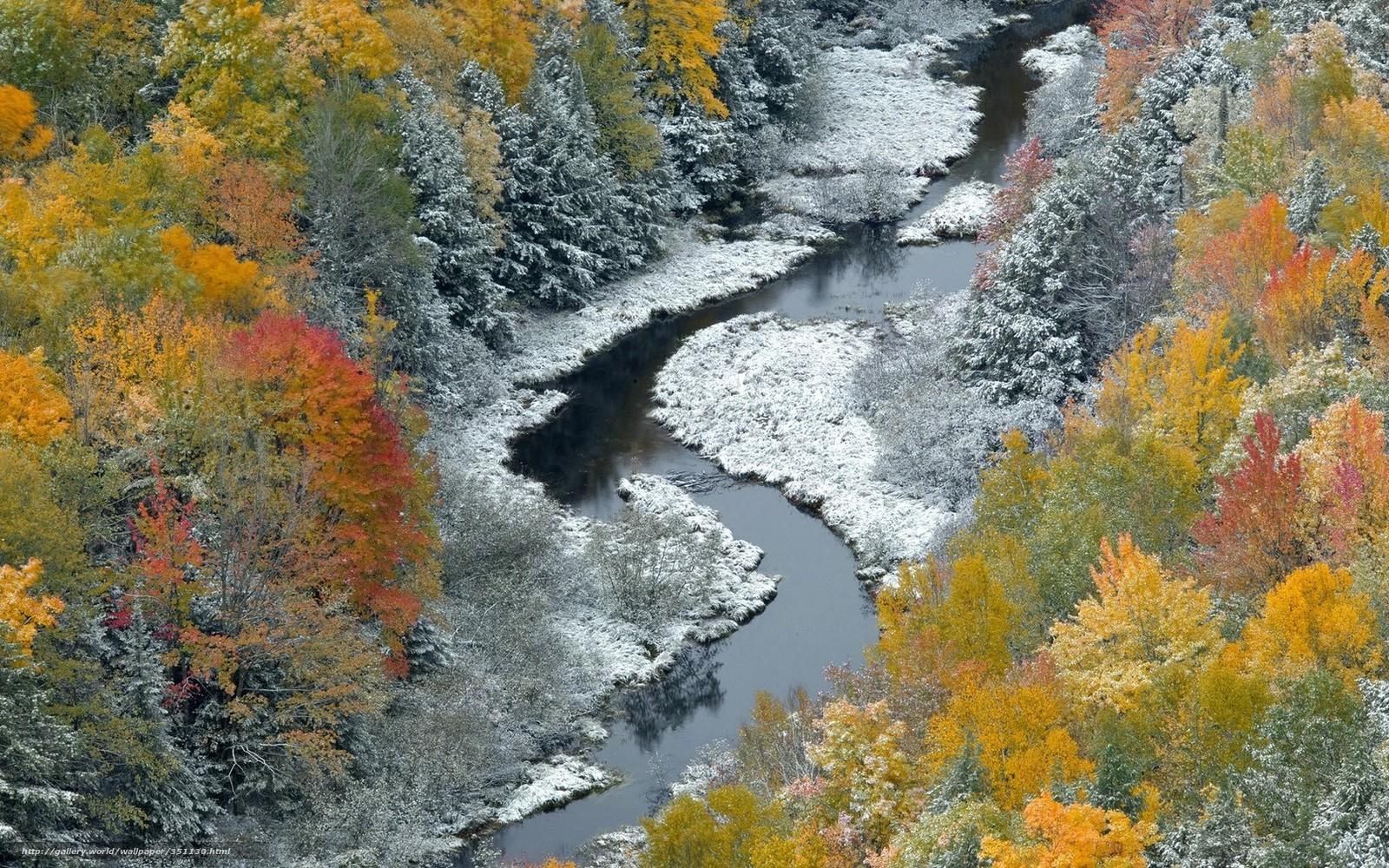 приемную фото природа осень зима некоторое