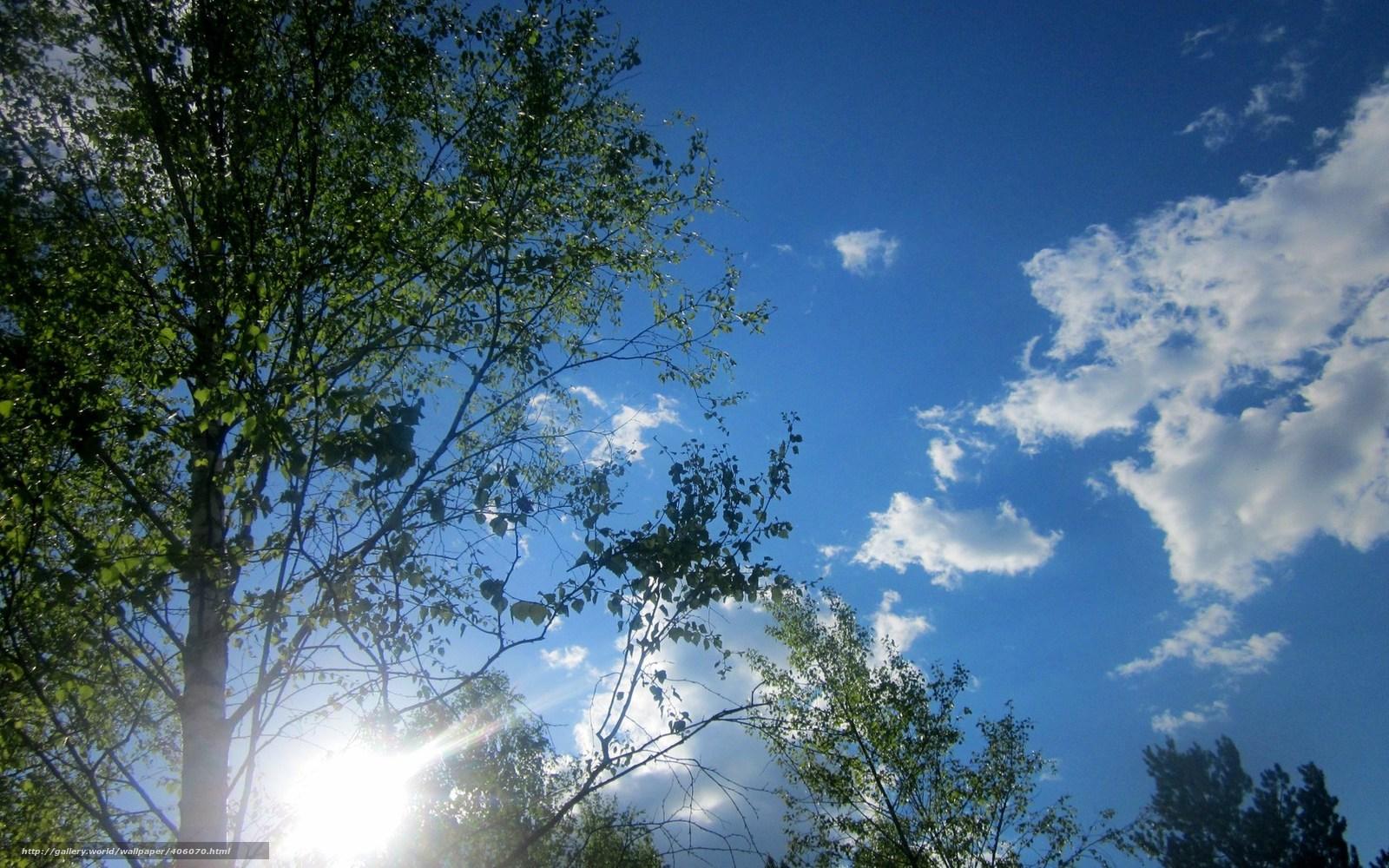 Весна небо солнце картинки