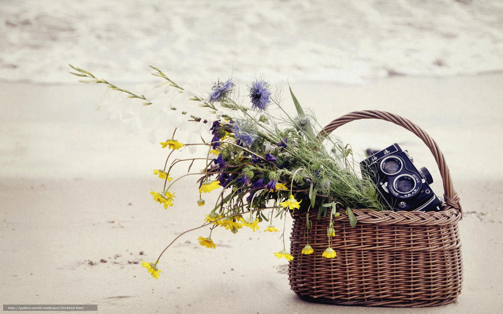 полевые цветы в корзинке картинка ассорти
