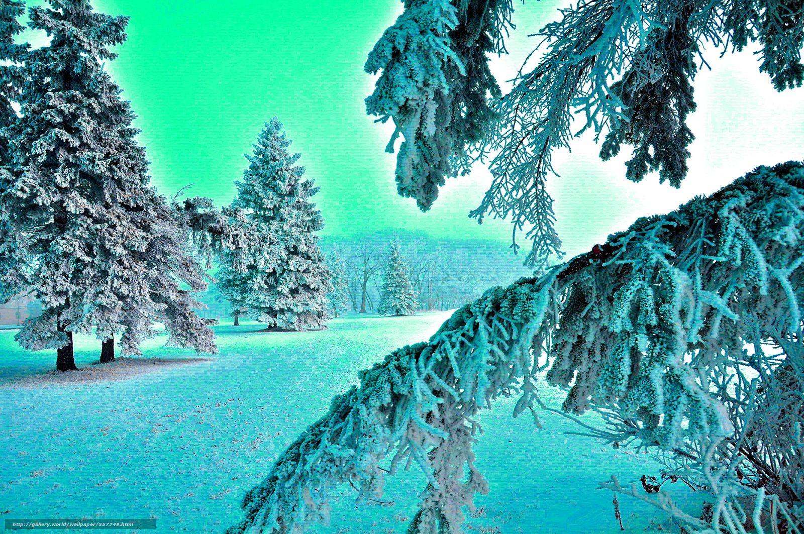 Зимние Обои На Андроид Бесплатно