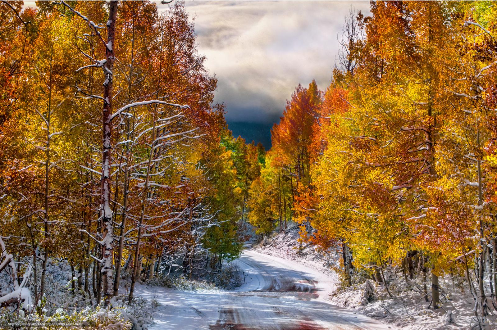 разным осенний пейзаж со снегом фото каждой