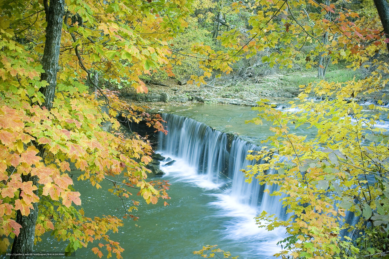 river, waterfall, autumn, forest, trees, nature