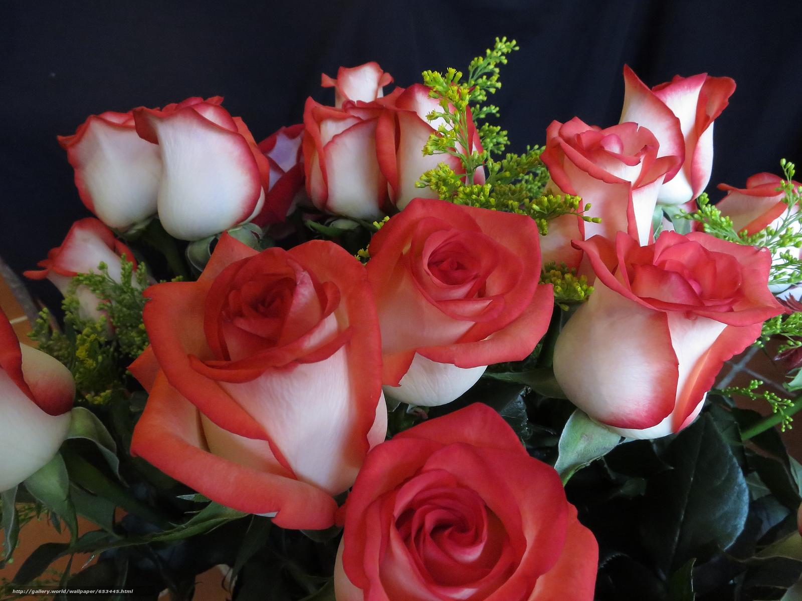 плитка красивые картинки супер красивых роз сводить буду больше